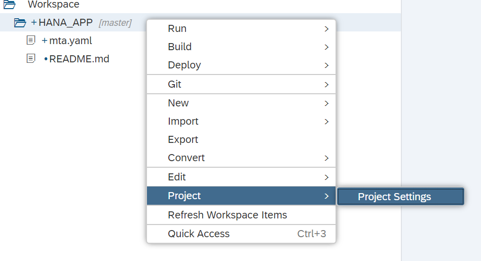 Project Settings for Git repository